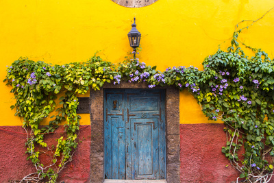 Decorative Doo on the Streets of San Miguel De Allende, Mexico Photographic Print by Chuck Haney