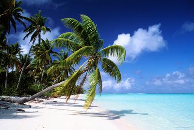 Polynesian Beach Prints