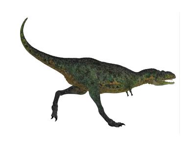 Aucasaurus Dinosaur Prints