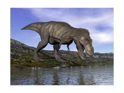 Tyrannosaurus Rex Dinosaur Walking to the Edge of Water Prints