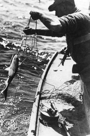 Swordfishing Photographic Print