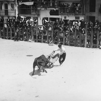 Spanish Bullfighting Photographic Print