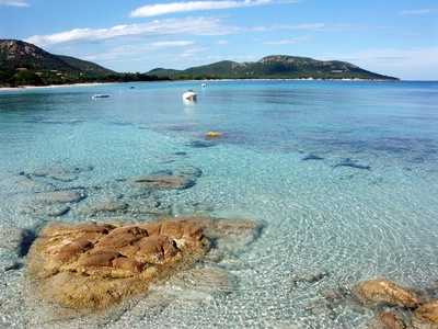 Corse Plage De Palombaggia Photographic Print by Steffen Ramsaier Photography