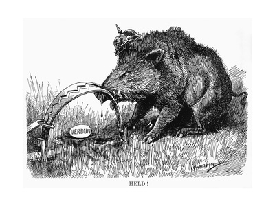 German Boar Held at Verdun - Cartoon Premium Giclee Print by L. Raven Hill
