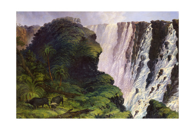 The Victoria Falls Giclee Print by Thomas Baines