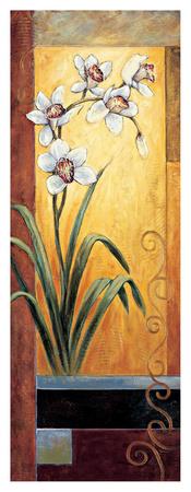 Orchid Giclee Print by Jill Deveraux