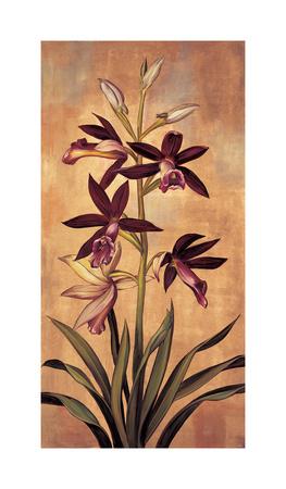 Burgundy Orchid Giclee Print by Jill Deveraux