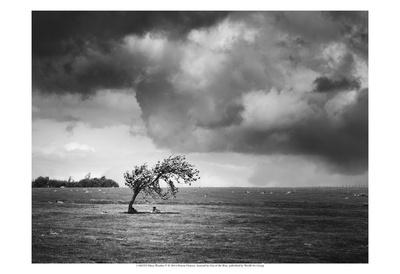 Misty Weather V Prints by Martin Henson