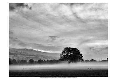 Misty Weather IV Print by Martin Henson