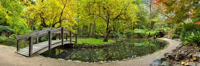 Alfred Nicholas Gardens Photographic Print by Wayne Bradbury