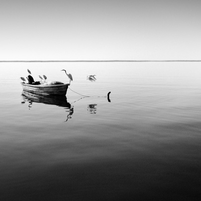 Boat and Heron II Photographic Print by Moises Levy