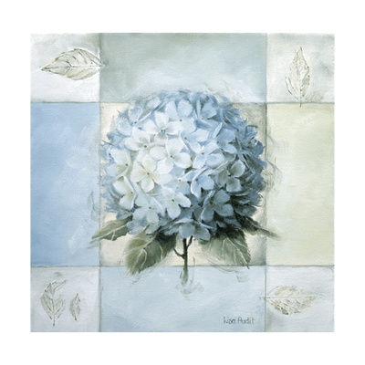 Blue Hydrangea Study 2 Giclee Print by Lisa Audit