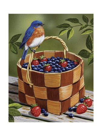 Blueberry Basket picnic fruit summer scenes fine art print by William Vanderdasson
