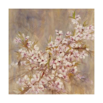 Cherry Blossom I Giclee Print by li bo