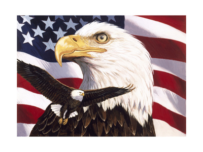 Eagle and Flag Giclee Print by William Vanderdasson