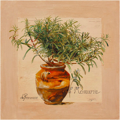 Rosemary pot Prints by  Lizie