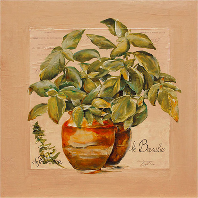 Basilic pot Posters by  Lizie