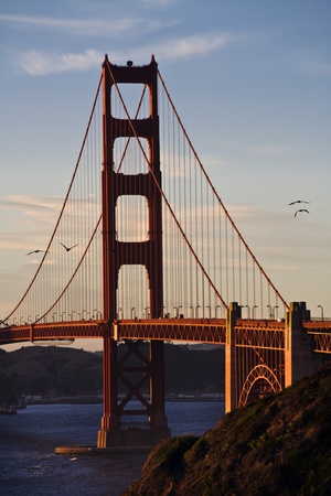 San_Francisco_D260 Photographic Print by Craig Lovell