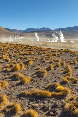 El Tatio Geysers in Atacama Desert Photographic Print by Daniele Falletta