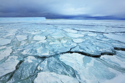 Pack Ice on Antarctica Photographic Print by Frank Krahmer