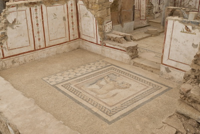 Lion Mosaic, Murals and Frescoes in a Terrace House, Curetes Street Photographic Print by Eleanor Scriven