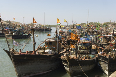 Fishing Boat Harbour, Porbander, Gujarat, India, Asia Photographic Print by Tony Waltham