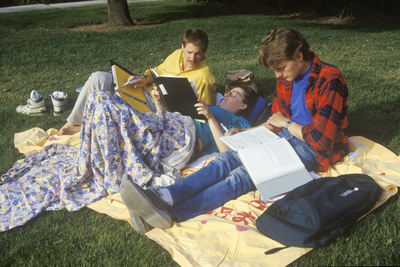 Students Studying on the Lawn, Sunnyvale, CA Photographic Print