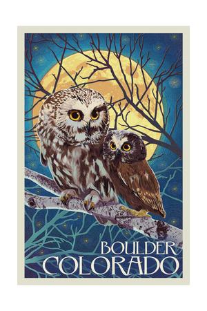 Boulder, Colorado - Owl and Owlet Art by  Lantern Press