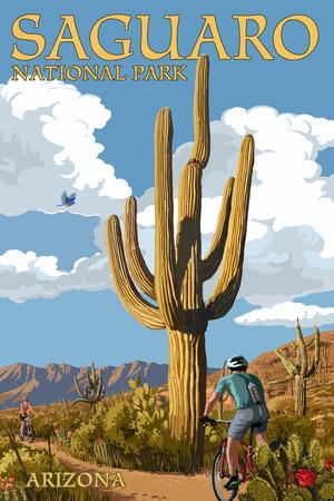 Saguaro National Park, Arizona - Bicycling Scene Posters by  Lantern Press