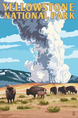 Yellowstone National Park - Old Faithful Geyser and Bison Herd Posters by  Lantern Press
