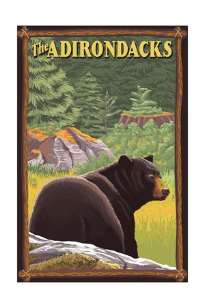 The Adirondacks - Black Bear in Forest Art by  Lantern Press