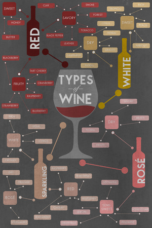 Types of Wine Infographic Posters by  Lantern Press