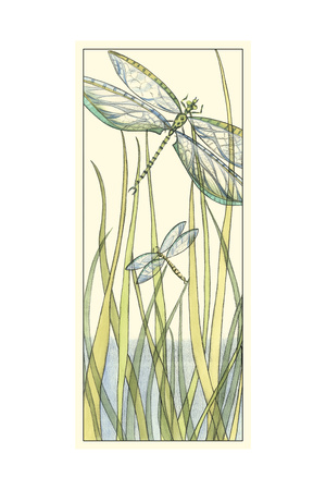 Gossamer Dragonflies II Prints by Chariklia Zarris