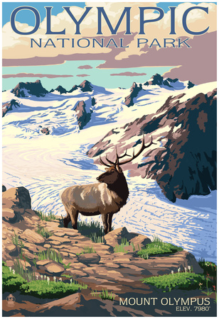 Mt. Olympus And Elk - Olympic National Park, Washington Poster
