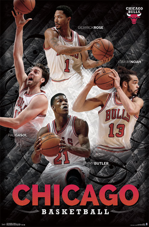 Chicago Bulls - Collage 14 Posters