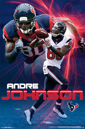 Houston Texans - A Johnson 14 Prints