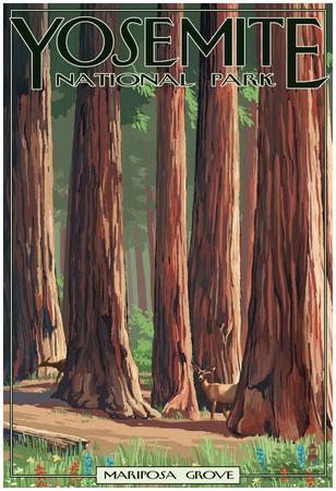 Mariposa Grove - Yosemite National Park, California Posters