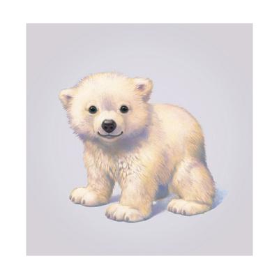 Polar Bear Giclee Print by John Butler Art