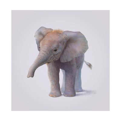 Elephant Giclee Print by John Butler Art
