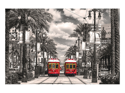 New Orleans Streetcars Stampa