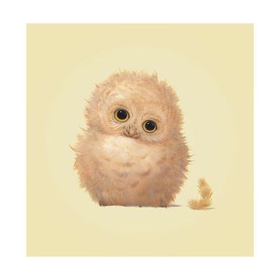 Owl Giclee Print by John Butler Art