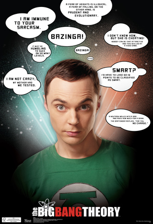 Big Bang Theory Sheldon Funny Jokes Sayings Quotes TV Poster Print