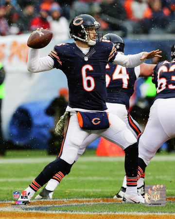 Jay Cutler 2014 Action Photo