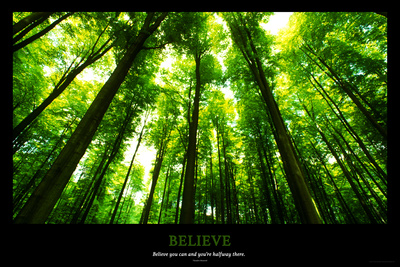 Trees Motivational Photo