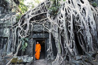 Cambodia, Siem Reap, Angkor Wat Complex. Buddhist Monk Inside Ta Prohm Temple (Mr) Photographic Print by Matteo Colombo
