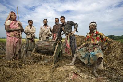 Villagers of Jaghati Threshing Rice Fotoprint av Jim Richardson