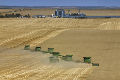 Wheat Harvest on a Farm in South Dakota Fotoprint av Jim Richardson