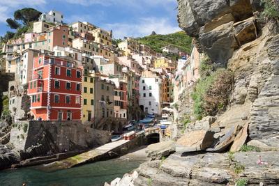 Manarola, Cinque Terre, UNESCO World Heritage Site, Liguria, Italy, Europe Photographic Print by Peter Groenendijk
