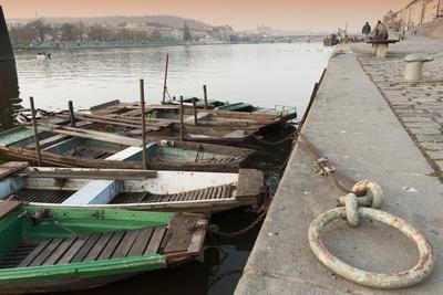Fishing Boats Photographic Print by Richard Nebesky