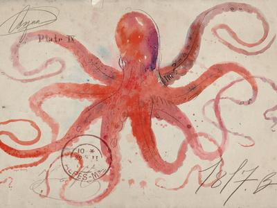 Nautical Octopus - Horizontal Premium Giclee Print by Angela Staehling